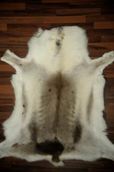 Very special hide 130 cm length